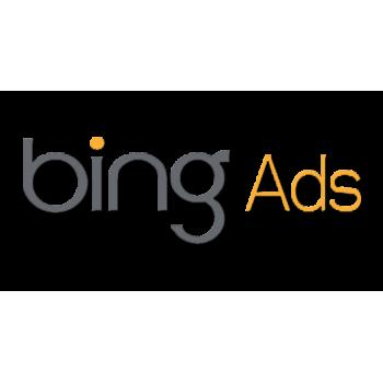 Bing Ads Accounts